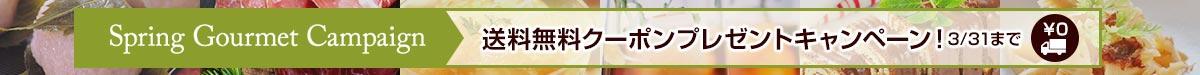 送料無料クーポンプレゼントキャンペーン中!3/31まで