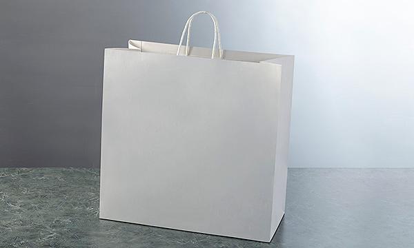ワインバッグの紙袋画像