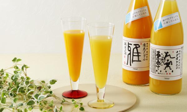 オレンジジュース2本セットギフト用はがきの内容画像