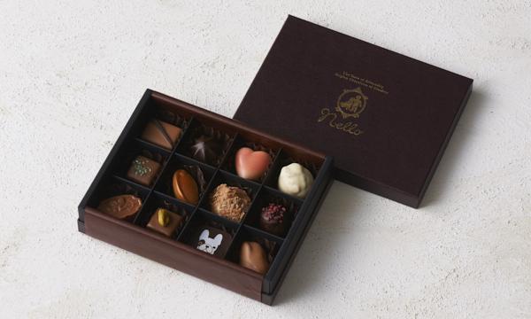 ベルギーチョコレート プラリネアソート12個入りの箱画像