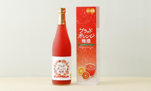 ブラッドオレンジ梅酒の箱画像