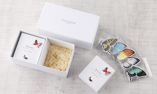 バタフライティー gift boxの箱画像