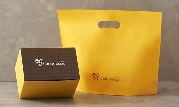 プリン研究所おすすめプリンセット6種×ソース12種の紙袋画像