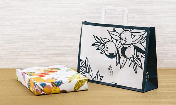 島津公 3種(桜島こみかん餡、小豆こし餡、白粋)12個入り(各4個)の紙袋画像