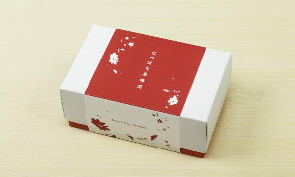 宮島はちみつ、江田島産沖美の輝きセットの包装画像