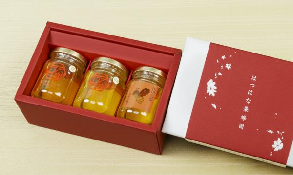宮島はちみつ、江田島産沖美の輝きセットの箱画像