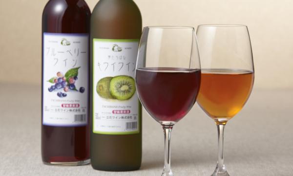 ブルーベリーワイン&キウイワイン 2本箱入りの内容画像