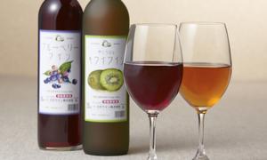 ブルーベリーワイン&キウイワイン 2本箱入り