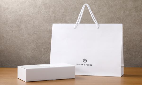 富士山style お茶漬け最中セットBの紙袋画像