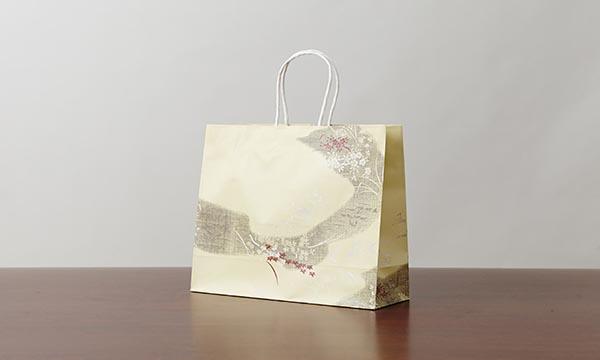 陸乃宝珠の紙袋画像