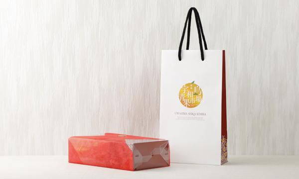 愛媛プレミアムジュースギフトの紙袋画像