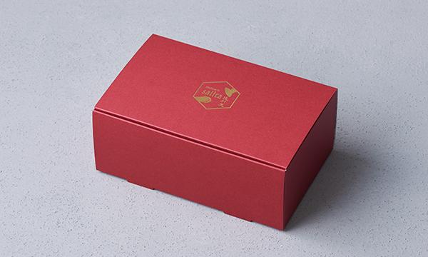 アラゴスクの包装画像