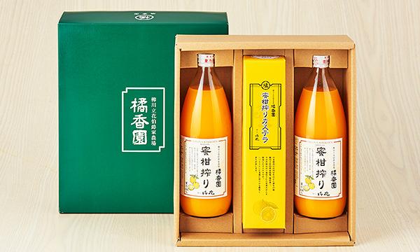 橘香園 蜜柑搾りギフトの箱画像