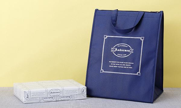 宮崎れもんケーキBOX 10個入りの紙袋画像