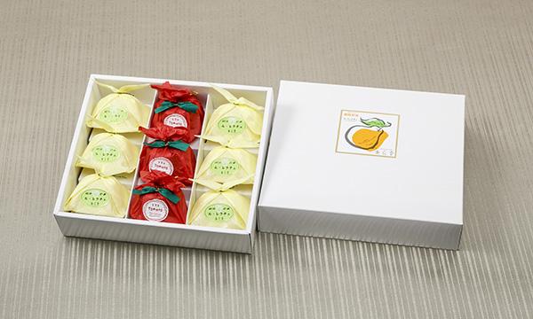 越後彩菓 ル・レクチェと妙高の赤茄子ギフトセットの箱画像