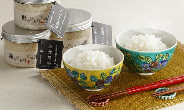 有機極上こしひかり「ひかり太陽米」と伝統工芸「九谷焼」夫婦茶碗セットの内容画像